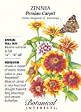 Botanical Interest - Zinnia Persian Carpet