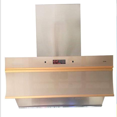 Campana extractora fijada a la pared para uso doméstico, para uso doméstico, para aparatos de cocina domésticos: Amazon.es: Hogar