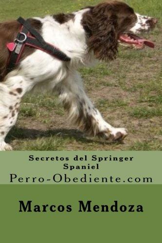 Secretos del Springer Spaniel: Perro-Obediente.com (Spanish Edition) [Marcos Mendoza] (Tapa Blanda)