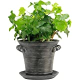 """Window Garden Rustic Charm 6"""" Planter - Fine Home Décor Ceramic Indoor Decorative Pot. For Herbs, Flowers, Succulents or Starting Seeds. Beautifully Packaged, Great Gift for Mom."""