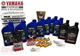 YAMAHA 2010+ F225CA 4.2L V6 Oil Change 10W30 FC 4M Lower Unit Gear Lube Drain Fill Gaskets NGK Spark Plugs LFR6A-11 Primary Fuel Filter Maintenance Kit