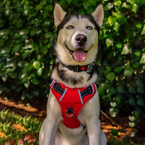 Babyltrl Large Dog Harness No Pull Adjustable