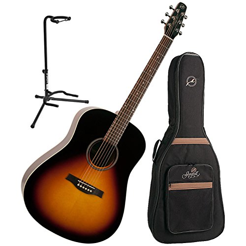 nburst Gloss Top Acoustic Guitar w/ Gig Bag and Stand (Gloss Top Acoustic Guitar)