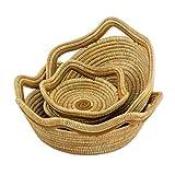 NOVICA Bohemian Pine Needles Basket, Brown, 'Fertile River' (set of 3)