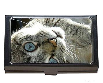 Titular de la tarjeta del nombre de la cartera Monedero de la tarjeta de crédito Identificación/Titular, Porta tarjetas de acero inoxidable Cat: Amazon.es: ...