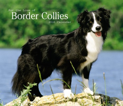Border Collies, For the Love of 2010 Deluxe Wall (Multilingual Edition)