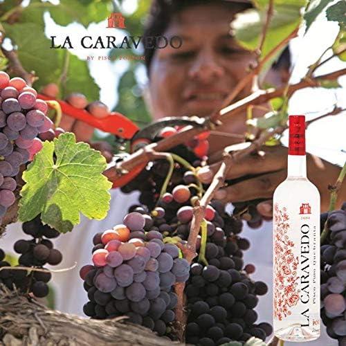 Pisco puro Quebranta La Caravedo 41° 70cl: Amazon.es: Alimentación ...