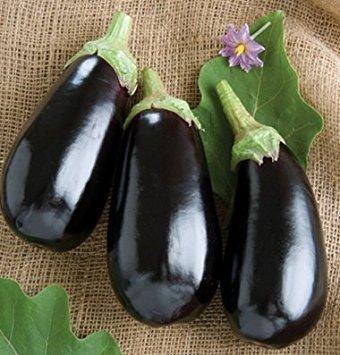 David's Garden Seeds Eggplant Nadia D2267BNH (Black) 50 Hybrid Seeds