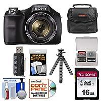 Sony Cyber-Shot DSC-H300 Digital Camera with 16GB Card + Case + Flex Tripod + Kit