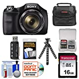 Sony Cyber-Shot DSC-H300 Digital Camera with 16GB Card + Case + Flex Tripod + Kit For Sale