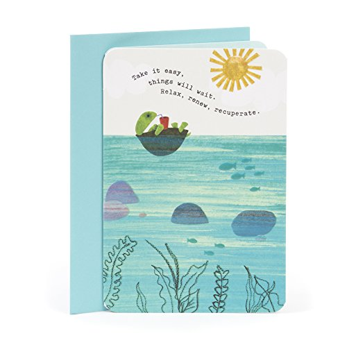Hallmark Get Well Greeting Card (Turtle Floating) - Get Well Card