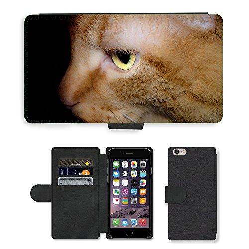 "Just Phone Cases PU Leather Flip Custodia Protettiva Case Cover per // M00127809 Cat Pet Fond des animaux domestiques // Apple iPhone 6 PLUS 5.5"""