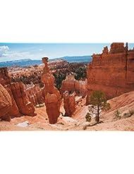 Sedona Arizona Rocks