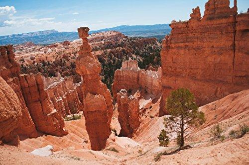 Sedona Arizona Rocks by