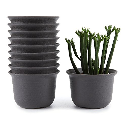 T4U 3.5 Inch Plastic Round Succulent Plant Pot/Cactus Plant Pot Flower Pot/Container/Planter Tan Package 1 Pack of 10