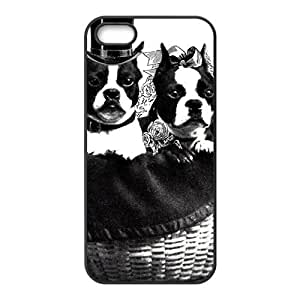 Cute gentle dog Cell Phone Case for Iphone 5s