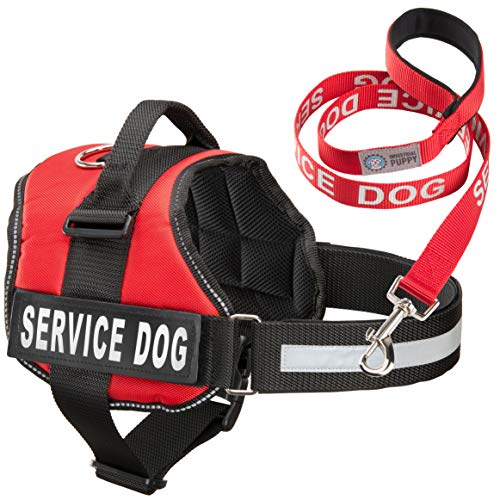 Industrial Puppy Service Dog Vest with Hook and Loop Straps & Matching Service Dog Leash Set - Harnesses from XXS to XXL - Service Dog Harness Features Reflective Patch and Comfortable Mesh Design (Service Dog Vest Xxl)
