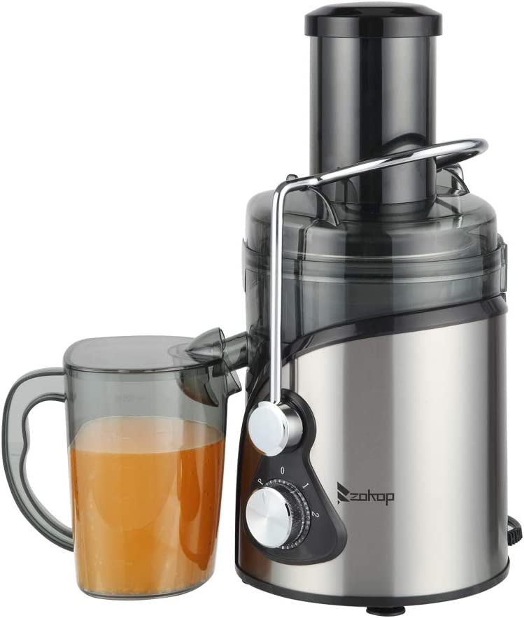 Stainless Centrifugal Juicer, 800W Electric Juice Extractor, Easy Clean Juicer Machines with Wide Mouth, BPA-Free Stainless Steel Juice Machine with Juice Container, Blender for Fruit Vegetable