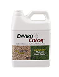 1,000 Sq. Ft. 4EverGreen Grass and Turf Paint
