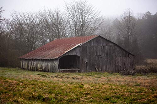 Country Photography Wall Art Print - Picture of Old Wooden Barn with Red Tin Roof in Mist in Rural Arkansas Rustic Farm Decor 5x7 to 40x60