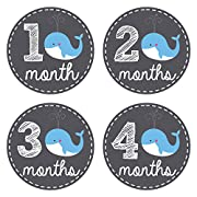 Pinkie Penguin Baby Monthly Stickers - Whale Theme - Baby Boy - 1-12 Months - Milestone Onesie Stickers - Month Stickers for Baby