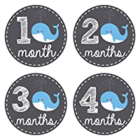 Pinkie Penguin Baby Monthly Stickers - Whale Theme - Baby Boy - 1-12 Months -...
