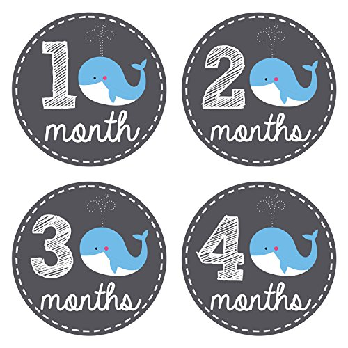Pinkie Penguin Baby Monthly Stickers - Whale Theme - Baby Boy - 1-12 Months - Milestone Onesie Stickers - Month Stickers for Baby by Pinkie Penguin
