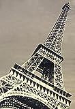 Abacasa Terra Paris Area Rug, 5′ by 8′, Black/Grey/Ivory