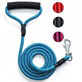 light blue lead rope - Potalay Strong Dog Leash Nylon Rope Dog Lead with Comfortable Padded Handle -4FT/6FT Reflective Leash for Night Safety for Small Medium Large Dogs 4FT Blue