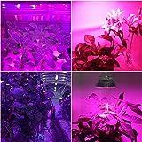 EAGLOD 50W Grow Light for Indoor Plants,PRA30 E26