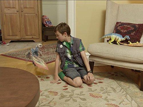 Dino Go Seek;Dino Giants -
