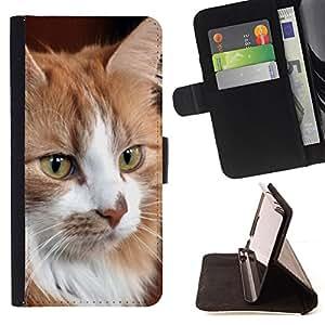 KingStore / Leather Etui en cuir / Samsung Galaxy S4 Mini i9190 / Gato noruego del bosque de Maine Coon