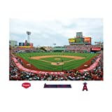 MLB Los Angeles Angels Inside Angel Stadium of Anaheim Mural Wall Graphic