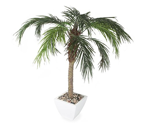 Closer2Nature Artificial 5ft Pygmy Date Palm Tree by Closer2Nature