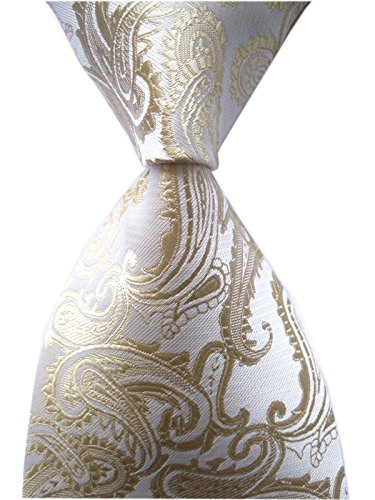 Mens Champagne Tie Elegant Events Formal Classic Handsome Necktie for Ideal Gift by Secdtie