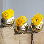 Chive-Set-of-6-JoJo-Small-3-Sphere-Round-Ceramic-Flower-Vase-Decorative-Modern-Floral-Vase-for-Home-Decor-Living-Room-Centerpieces-and-Events-Cute-Bud-Vase-Gold