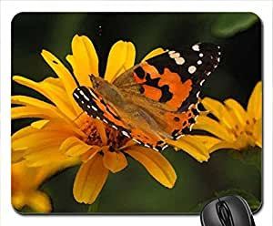 BLACK AND ORANGE BUTTERFLY Mouse Pad, Mousepad (Butterflies Mouse Pad, 10.2 x 8.3 x 0.12 inches)