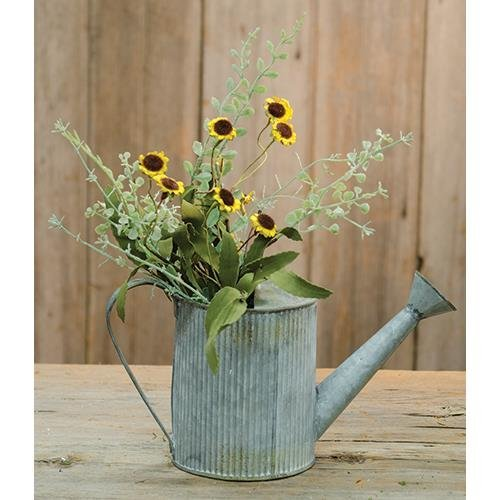 Heart of America Bird's Eye Daisy Bush Yellow 18''