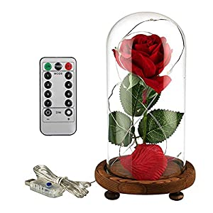 JOLIMENT Beauty and The Beast Rose Set, Red Silk Rose and Fallen Petals Glass Dome Handmade Wooden Base LED Light Strings, Eternal Rose Preserved Flower Home Decor Festival Party Wedding Anniversary 100