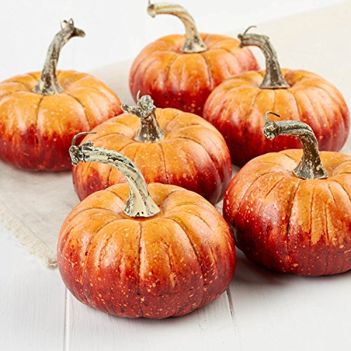 Factory Direct Craft Package of 6 Rustic Artificial Pumpkins for Halloween, Fall and Thanksgiving Decorating by Factory Direct Craft (Image #1)