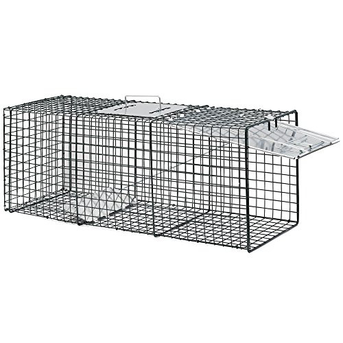 Review OxGord Live Animal Trap 32″ X 12″ X 12″ Catch Release Humane Rodent Cage for Rabbits, Stray Cat, Squirrel, Raccoon, Mole, Gopher, Chicken, Opossum, Skunk & Chipmunks Steel Outdoor Professional Grade