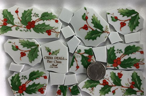 Mosaic Art & Craft Supply ~ Red & Green Christmas Holly Tiles on White China (T#414b) ()