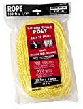 Lehigh Group DF4100W-P Hollow Braid Polypropylene Floating Rope, 1/4'' x 100'