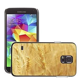 Super Stellar Slim PC Hard Case Cover Skin Armor Shell Protection // M00050057 golden wheat macro aero close-up // Samsung Galaxy S5 i9600