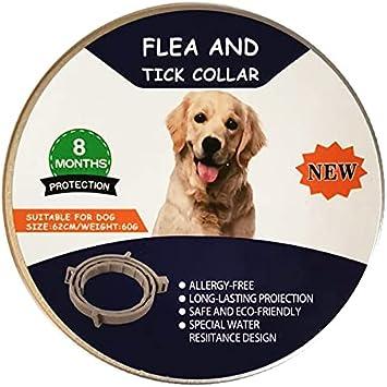 Collar antiparasitario para Perro, Collar antipulgas y antigarrapatas para Perro y Gatos, Producto Natural (S-38cm)