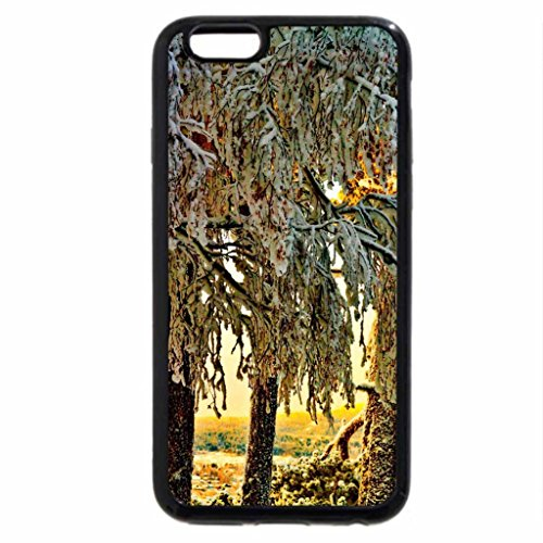 iPhone 6S / iPhone 6 Case (Black) Winter trees at sunrise