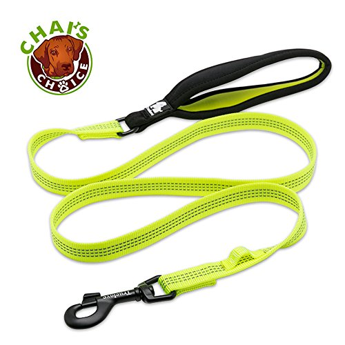 Chai's Choice Best New 2018! Outdoor Adventure II Dog Leash. 3M Reflective with Soft Sponge Handle. Matching Harness Available. (Medium, Neon Yellow)