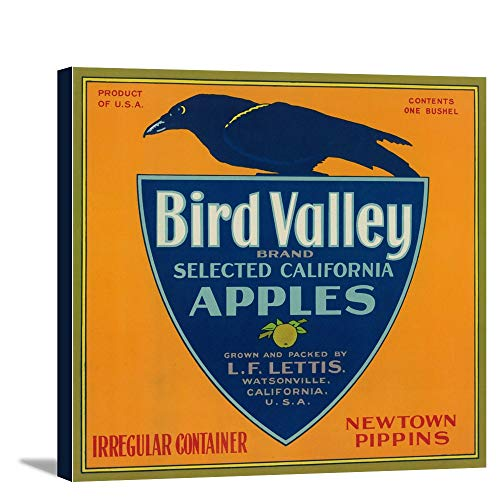 (Bird Valley Apple Crate Label (12x10 7/8 Gallery Wrapped Stretched Canvas))