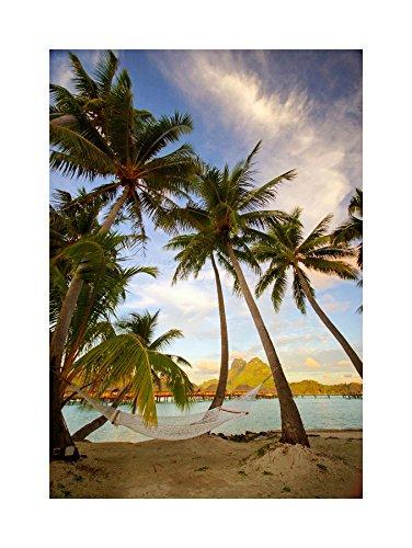 Bora Bora Framed - PHOTO BEACH LANDSCAPE BORA TROPICAL PALM TREE FRAMED PRINT F12X2774