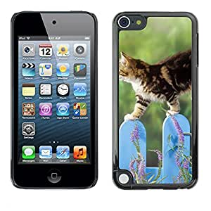 Hot Style Cell Phone PC Hard Case Cover // M00100674 animals fences cat // Apple ipod Touch 5 5G 5th